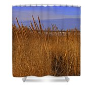 Stormy Walk On The Beach Viii Long Beach Washington Shower Curtain