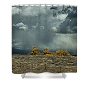 Stormy Wet Shower Curtain