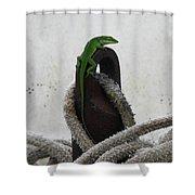 Stowaway Shower Curtain