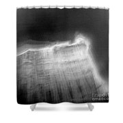 St.petersburg #307 Shower Curtain