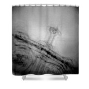 St.petersburg #310 Shower Curtain