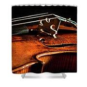 Stradivarius Shower Curtain