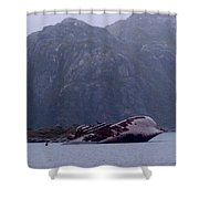 Straits Of Magellan Iv Shower Curtain