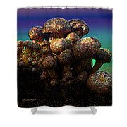 Strange Mushrooms 2 Shower Curtain