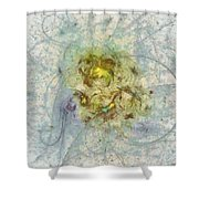 Strangers Concord  Id 16098-001607-44720 Shower Curtain