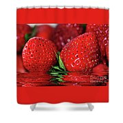 Strawberries Afloat By Kaye Menner Shower Curtain