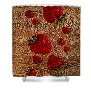 Strawberries And Stone Slab  Shower Curtain