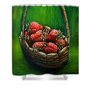 Strawberries Contemporary Oil Painting Shower Curtain