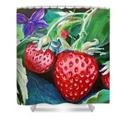 Strawberries Shower Curtain