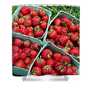 Strawberries In A Box On The Green Grass Shower Curtain