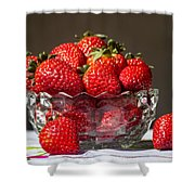 Strawberries In The Sun Shower Curtain
