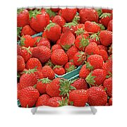 Strawberries Jersey Fresh Shower Curtain