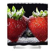 Strawberries Panorama Shower Curtain