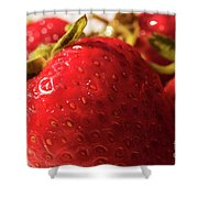 Strawberry Fun Shower Curtain