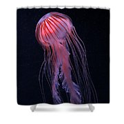 Strawberry Jelly Shower Curtain