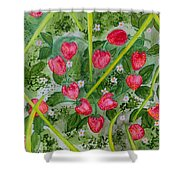 Strawberry Love Patch Shower Curtain