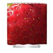 Strawberry Macro Shower Curtain