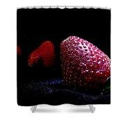 Strawberry Trail Shower Curtain
