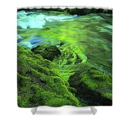 Stream Above Whitehorse Falls Shower Curtain