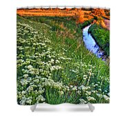 Stream And Sunset Shower Curtain