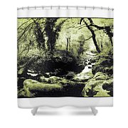 Stream In An Ancient Wood Shower Curtain