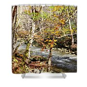 Stream In An Autumn Woods Shower Curtain