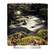 Stream In Lapland Finland Shower Curtain