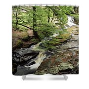 Stream In The Irish Countryside Shower Curtain
