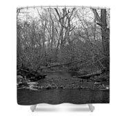Stream In The Woods Shower Curtain