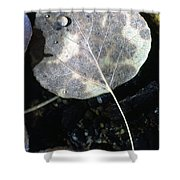 Stream Leaf Shower Curtain
