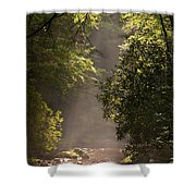 Stream Light Shower Curtain by Steve Gadomski