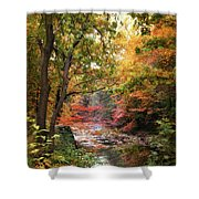 Stream Of Consiousness Shower Curtain