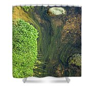 Stream Of Weeds I Shower Curtain