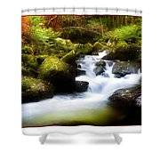 Stream Steps Shower Curtain