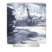 Streambed Shower Curtain
