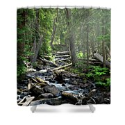 Streaming Through The Trees Shower Curtain