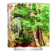 Streams In A Wood Covered With Leaves Shower Curtain