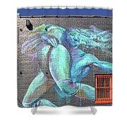Street Art In Charleston Shower Curtain