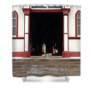 Street Dog At Church Shower Curtain