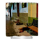 Street Dogs Shower Curtain