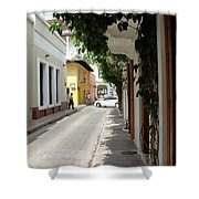 Street In Colombia Shower Curtain