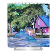 Street In St Augustine Shower Curtain