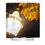 Street Lamp  Shower Curtain