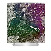 Street Painter Shower Curtain