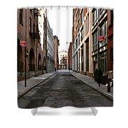 Street View Shower Curtain