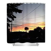 Street View Shower Curtain