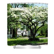 Street With Dogwood Shower Curtain