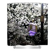 Streetlights In Blossoms Shower Curtain