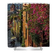 Streets Of San Miguel Shower Curtain