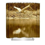 Strength And Peace Shower Curtain